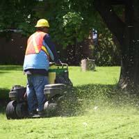 one of our techs is mowing the lawn
